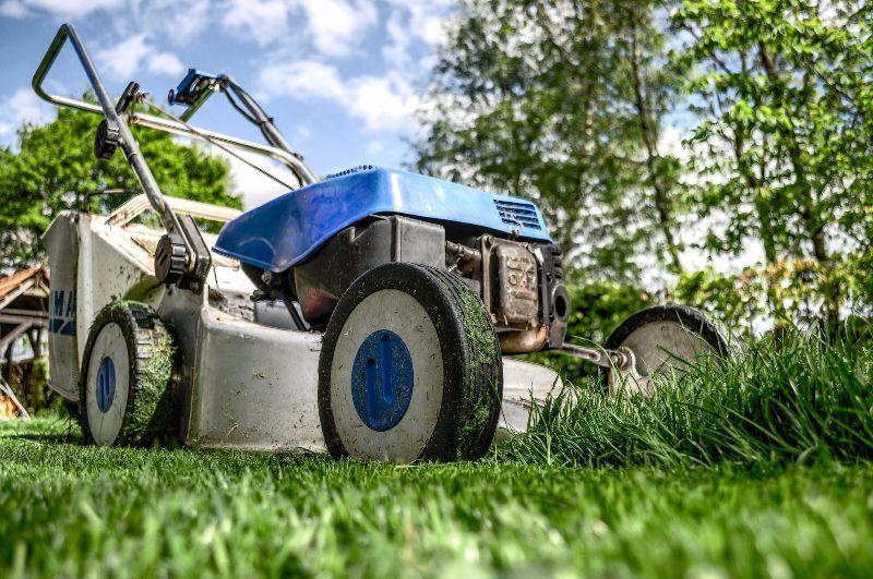 Tipps & Anleitung zum Rasen mähen
