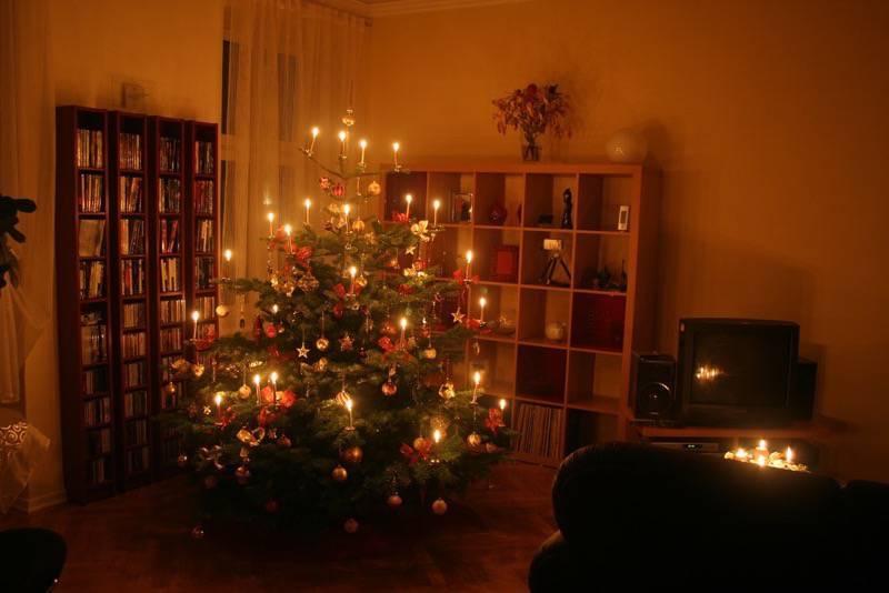 den besten weihnachtsbaum kaufen und finden. Black Bedroom Furniture Sets. Home Design Ideas