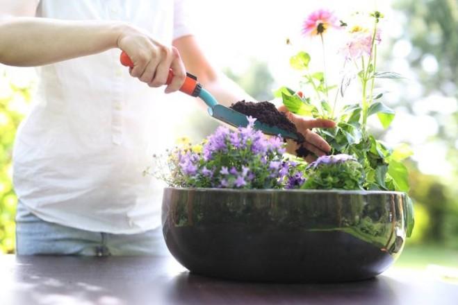 Hausmittel als Pflanzendünger und Blumendünger