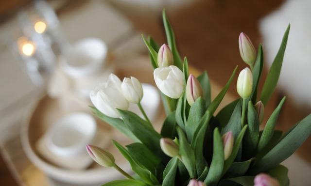 5 ideen zum wohnung einrichten mit wenig geld for Wohnung dekorieren mit wenig geld