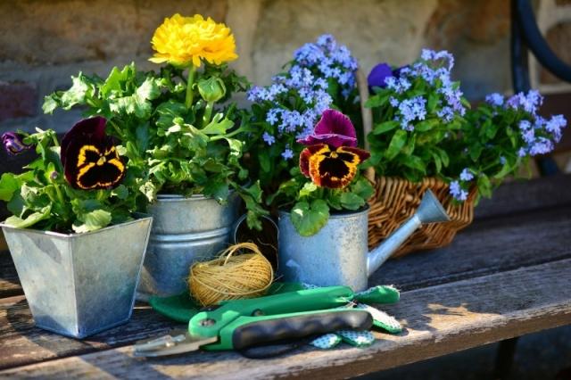 Sicherheit Gartenarbeit im Sommer