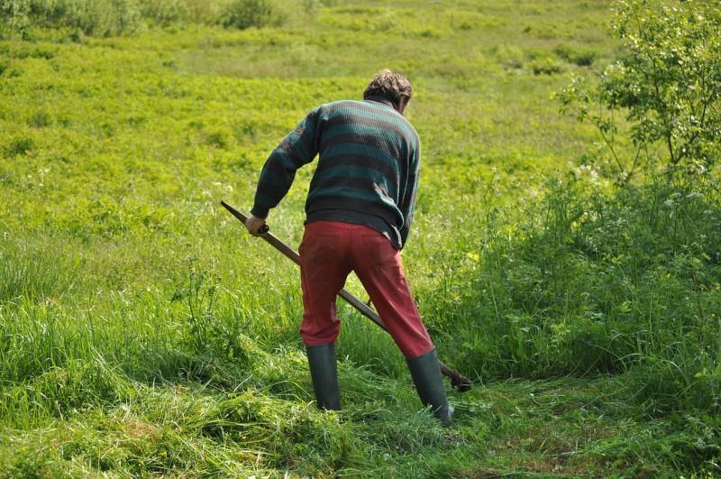 Tipps zur Ausstattung für die Gartenarbeit