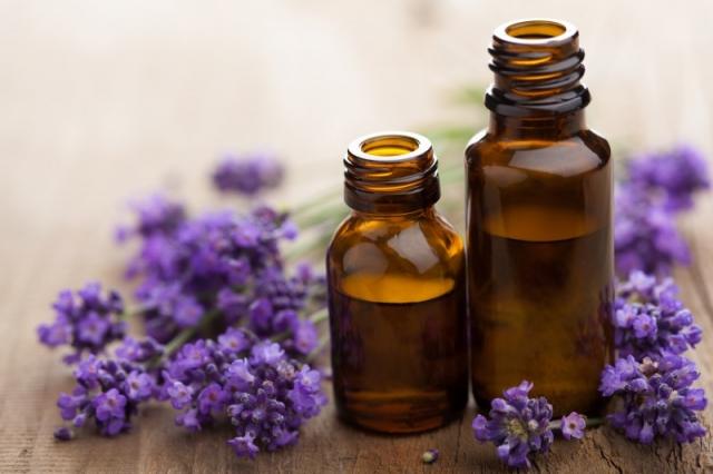 Lavendel als Hausmittel und Heilpflanze